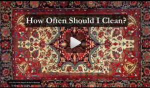 How Often Should I Clean