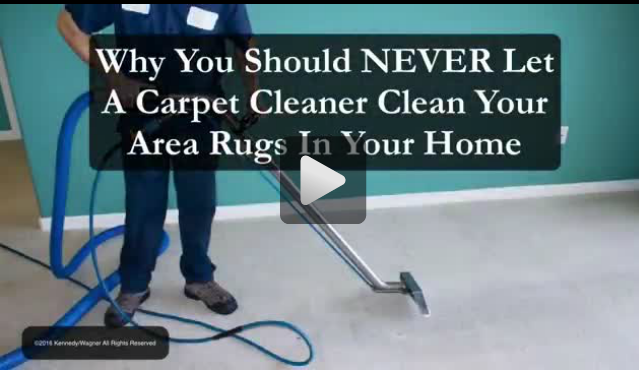 Why You Should NEVER Let A Carpet Cleaner Clean Your Area Rugs!